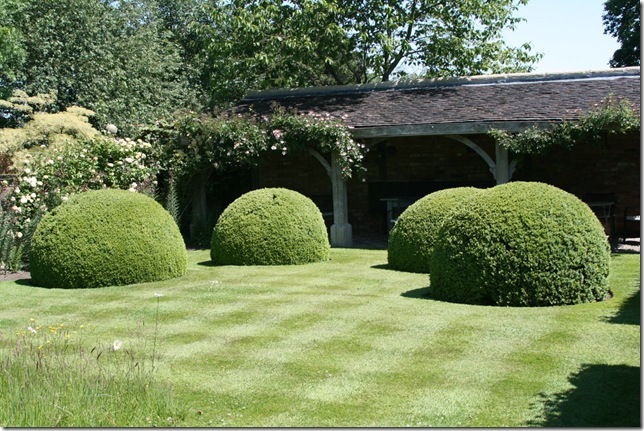 Font garden