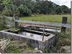 Water trough by gate