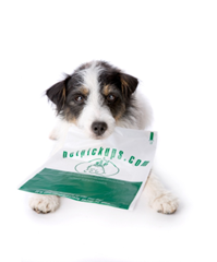 little compostable dog