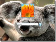 Cambiare immagine di sfondo della schermata di login per accedere all'account Windows