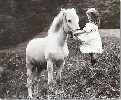1910whitehorse