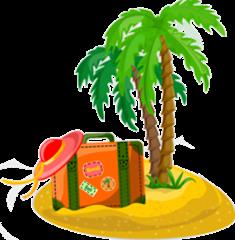 palmn