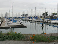 Foster City Trail 085.JPG Photo