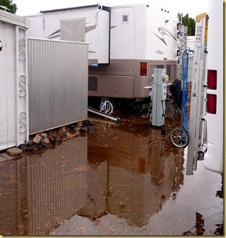 2011-12-13 - AZ, Yuma - Cactus Gardens - Record Rainfall (1)