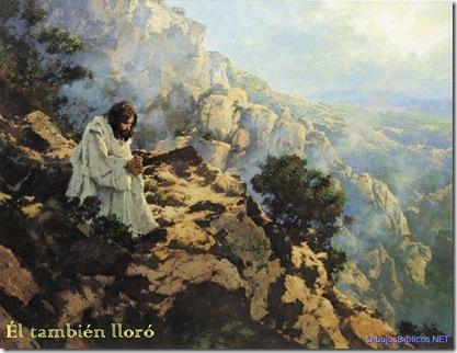 JesusEnOracion-ElTambienLloro-0606