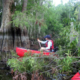 Two OClock Bayou Paddle July 14, 2012 - IMG_0046.JPG
