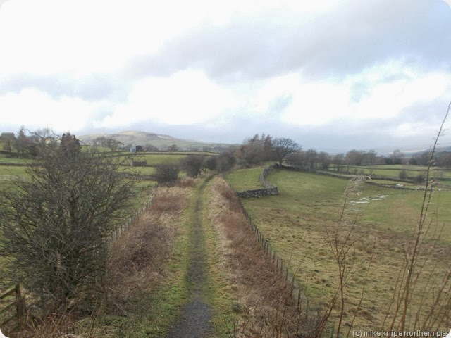 teesdale railway path