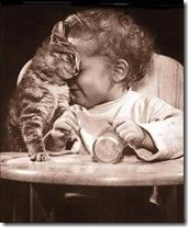 Crianca e Gato