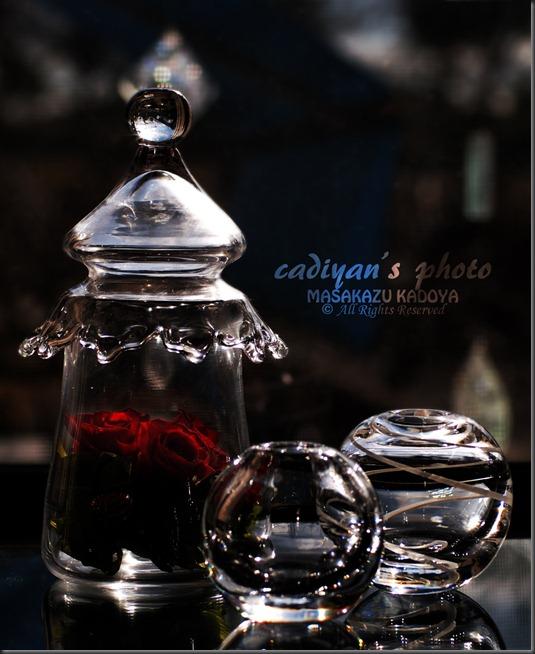 E-PL1_2012-12-04_016