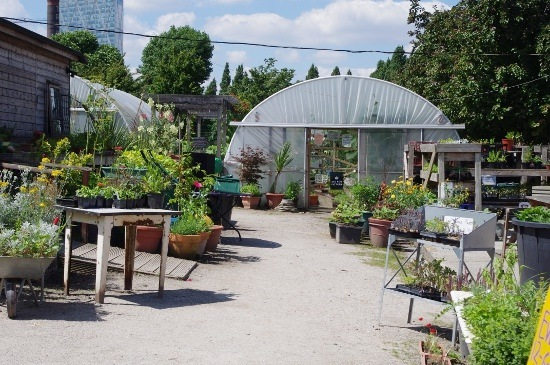 city farm 1
