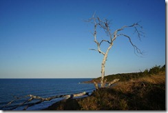 Agnes Beach lookout
