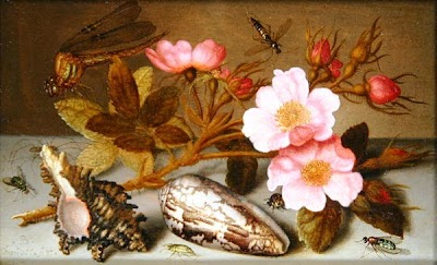 Still-life-depicting-flowers-shells-and-a-dragonfly-xx-Balthasar-van-der-Ast.jpg