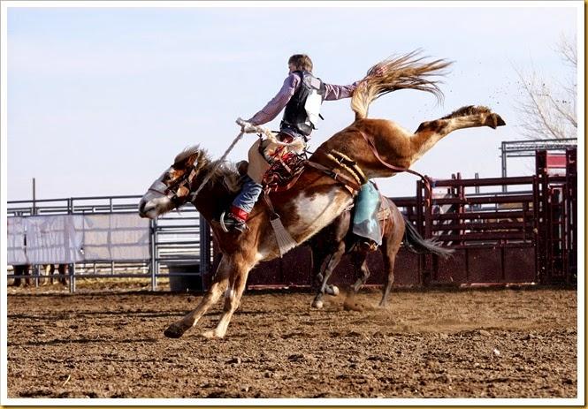 Utah Summer Rodeos image #2