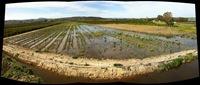 IMG_2042 creazione panorama (1280x545)