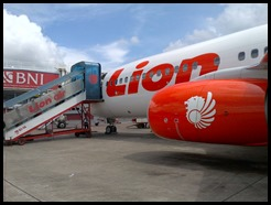 Lion Air and Batik Air