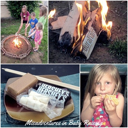 duraflame-campfire-roasting-logs