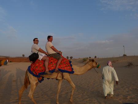 Dubai Desert Safari: pe camila