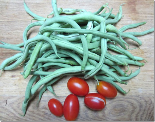 Fortex beans and Juliet tomatoes