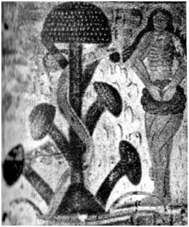 Fresco románico de la capilla de Plaincourault (Francia). Eva y el Árbol del Conocimiento (amanita muscaria).