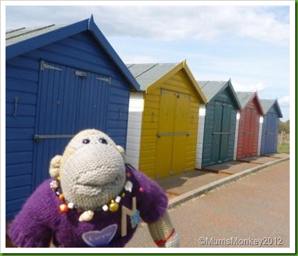 dawlish Warren beach Huts