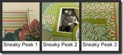 Sneaky peak 2a