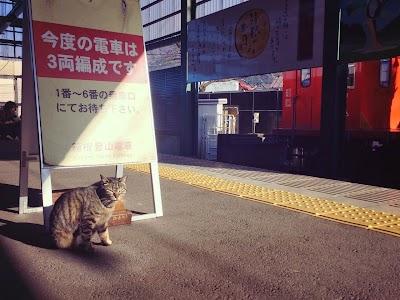 2014_12_21_19_27.jpg