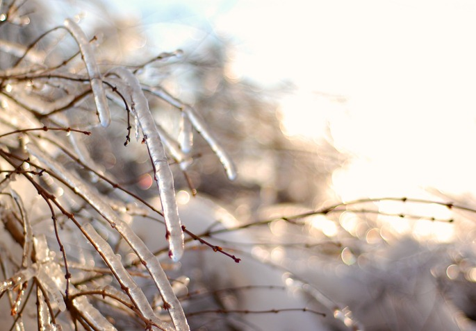 Snow35