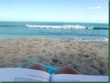 a very FAVORITE occupation-reading on the beach