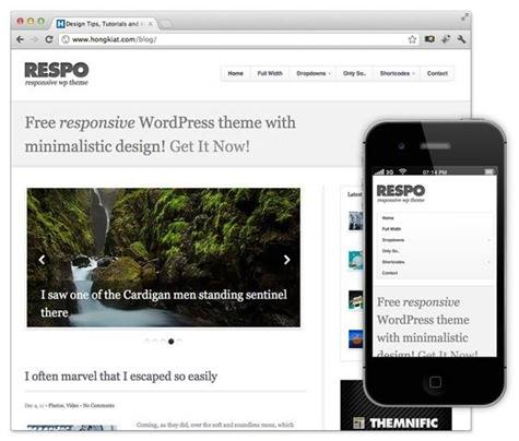 respo-theme-download-responsive