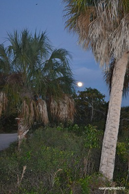 Moonrise over Estero Bay_December 27th