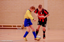 SEIZOEN 2013-2014 - WVV E2 - 01 FEB - WVV E2 - ZAALCOMPETITIE