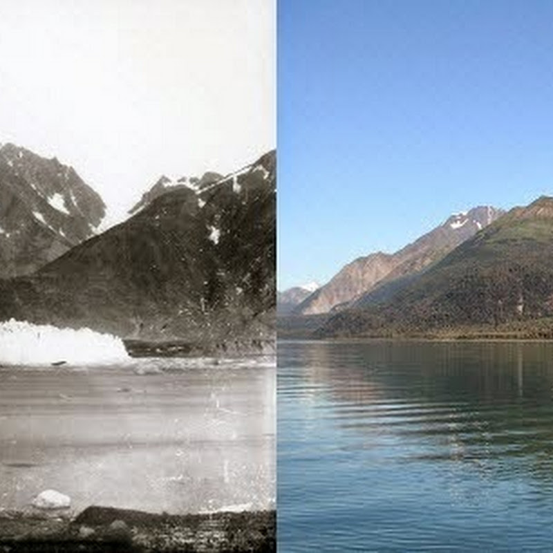 Photos Taken 100 Years Apart Show How Glaciers Are Disappearing