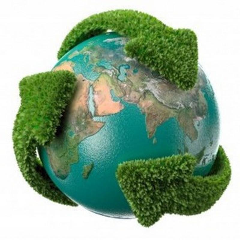 Comienzan a funcionar en España los nuevos certificados de origen 'verde' de la electricidad