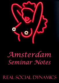 Cover of Real Social Dynamics's Book Amsterdam Seminar Notes