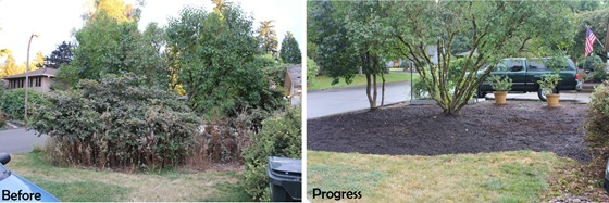 yard-work-before-after
