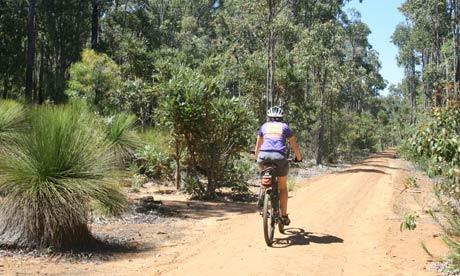 04_Munda-Biddi-Trail-Australia.jpg