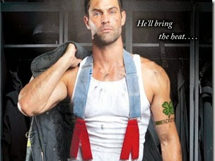 Review: Flirting With Fire (Hot in Chicago #1) by Kate Meader