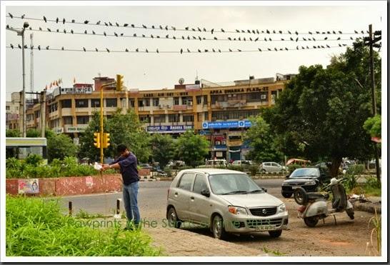 Delhi City Tour (4)