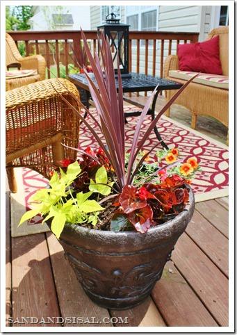 flower pots (719x1024)