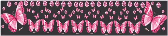 barrinha borboleta