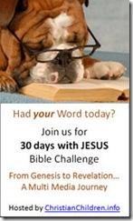 biblechall (2)