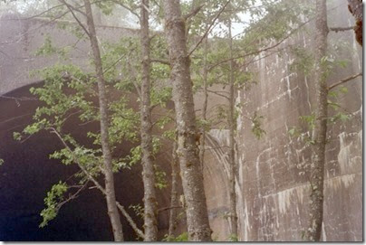 259160221 East Portal of the Windy Point Tunnel on the Iron Goat Trail in 2002