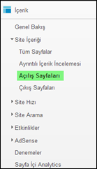 Google Analytics Site İçeriği