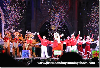 Mickey's Very Merry Christmas Party 2014 (28)