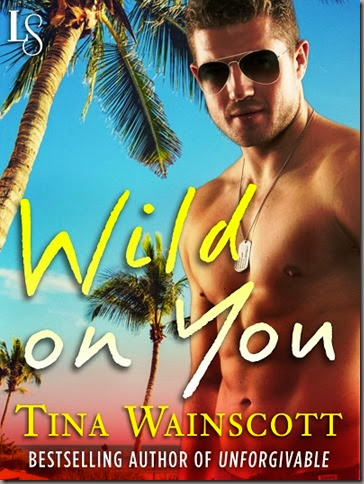 Wild on You - Cover SMALLER