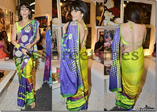 Designer_Multicolor_Saree(1)