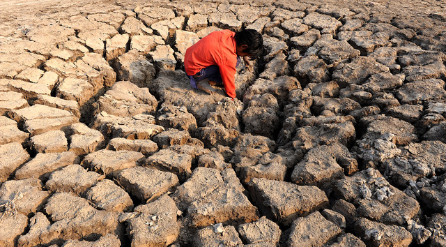A parched dry bed in the Khadaghoda Sector in the Little Rann of Kutch, some 160 kms from Ahmedabad, India. Photo: Sam Panthaky / AFP via Getty Images