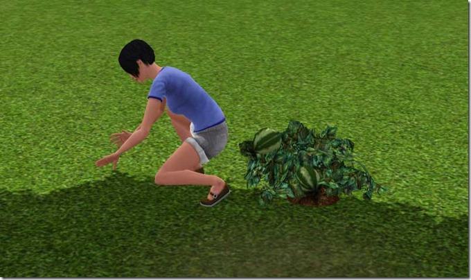 gardening-wrong