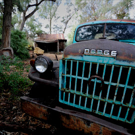 Old Truck by Dub Scroggin - Transportation Automobiles ( truck, dodge, wide-angle, rusty, closeup )