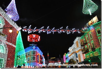 Osborne Family Spectacle of Dancing Lights (15)